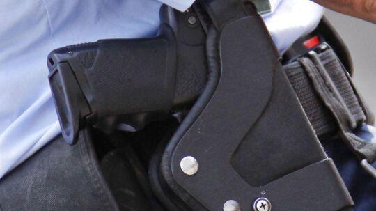 En betjent måtte trække tjenestepistolen mod to hunde på Fyn i dag. Arkivfoto.