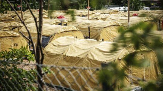 30-45 procent af flygtningene i Danmark har traumer, som kan resultere i PTSD ifølge en undersøgelse udarbejdet af LG Insight for Integrationsministeriet i 2013.