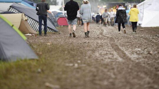 Det var blandt andet på årets version af festivalen Bråvalla, at overgrebene blev anmeldt.