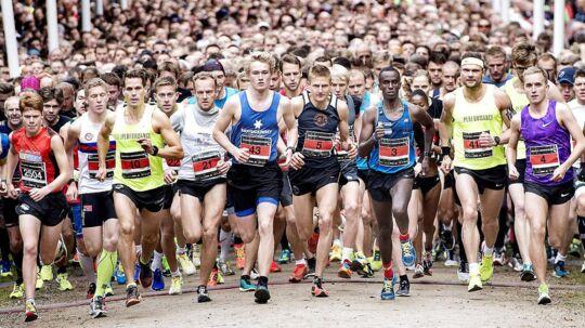 Maj Invest Eremitageløbet 2016 blev løbet i dyrehaven nord for København søndag d. 9. oktober 2016. Vinder af løbet blev Abdi Ulad i tiden 40.37. Hurtigste kvinde blev OL-løberen 18-årige Anna Emilie Møller, der satte ny rekord i tiden 43.45. I alt var der tilmeldt ca. 12.500 løbere. Her er det eliteløberne der sendes afsted.