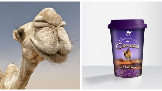I uge 22 kan du købe iskaffe lavet på kamelmælk i alle Meny-supermarkeder.