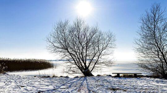 Solen skinner over sneen i Danmark de næste dage. Arkiv