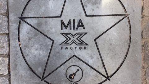 Sådan så flisen ud, som Hedensted Kommune havde givet til Mia fra X Factor. Men nu er den stjålet, og kommunen opfordrer tyvene til at aflevere flisen tilbage.