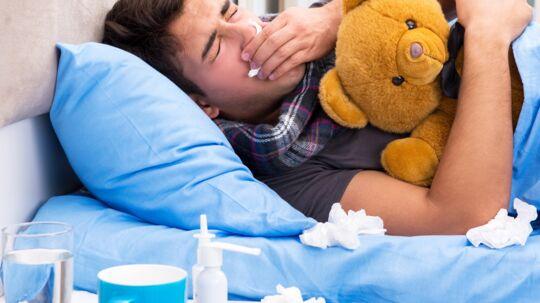 Hvorfor er det altid, at mænd har det så umådeligt meget værre, når de har fået influenza end kvinder? Er der en grund, eller beklager mændene sig bare mere end kvinder? Akrivfoto Scanpix