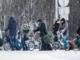 Asylansøgere norge