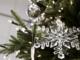 Muslimere blokerer for juletræ