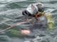 Dykkere dukker op i ulykkesstatistikkerne