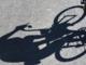 TDF2007-CYCLING-WIGGINS