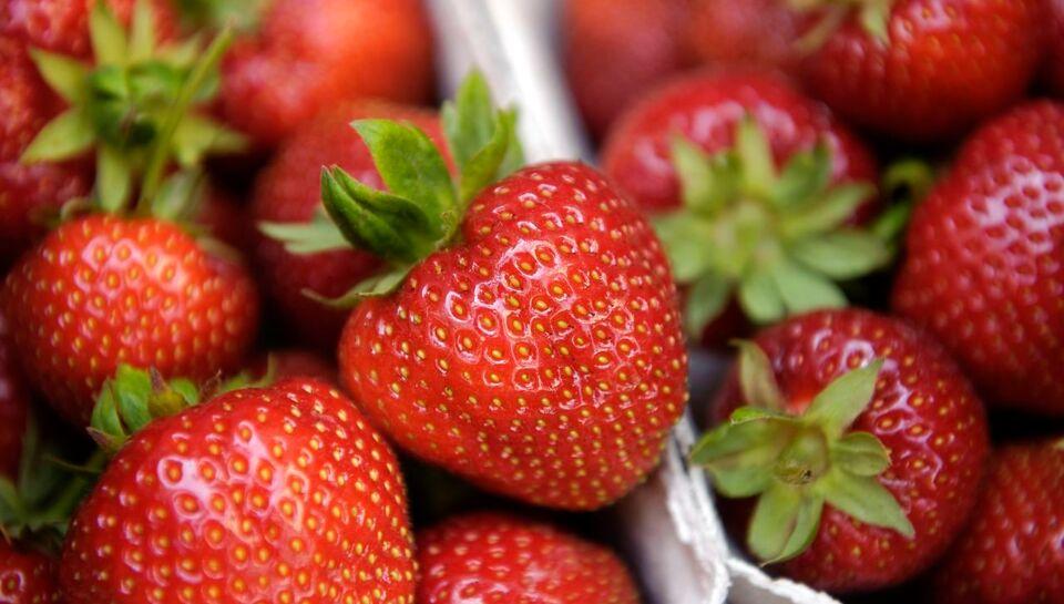 Eivinds jordbær blev stjålet: `Folk er smålige`